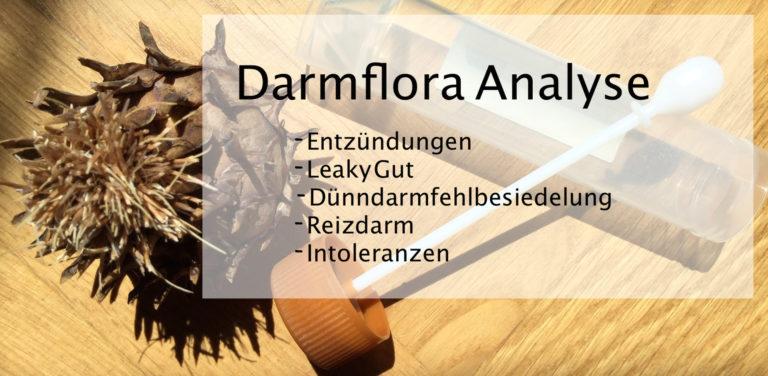 Darmcheck/Stuhlanalyse Heilpraktiker Pankow